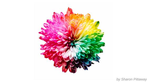 colours branding